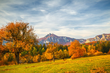 Landscape with a trees in autumn colors. Mountains in the Sulov rocks Nature Reserves, Slovakia, Europe.