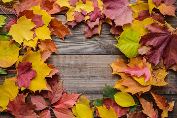 Horizontal frame of autumn leaves