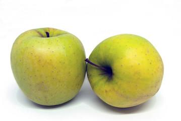 Due mele verdi su fondo bianco.