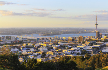 Landscape View to Auckland New Zealand from Mt Eden