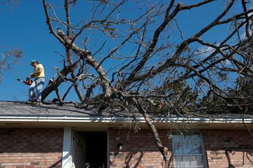 Mike Langston, of Pensacola, attempts to clean up trees felled by Hurricane Michael in Springfield