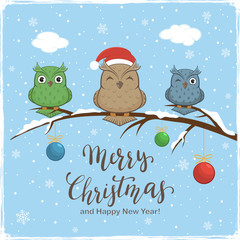 Owls with Colored Balls and Lettering Merry Christmas on Winter Background