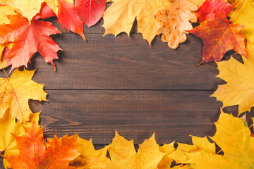 Colorful autumn leaves foliage on dark wooden texture background. Free space for your text.