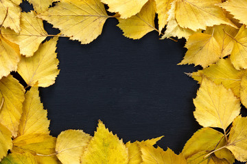 Frame composed of yellow autumn leaves over black. Copy space