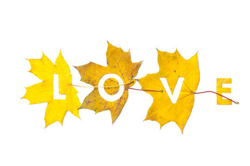 Autumn. Letters carved from wedge leaves