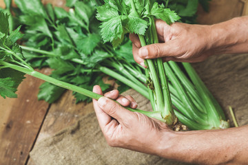 Hands share stalks of celery on green beam