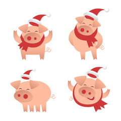 Pigs Character Set. New Year. 2019. Flat design vector illustration