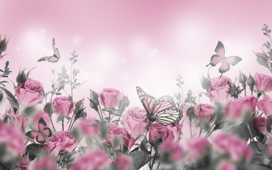Wall Mural - Bouquet of pink roses with butterflies, garden flowers. Floral background.