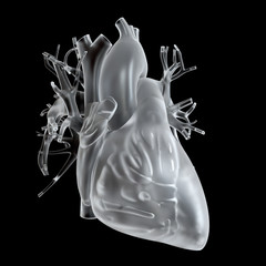 3d rendered medically accurate illustration of glass heart