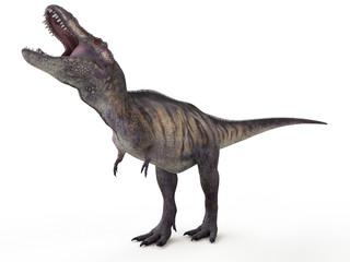 3d rendered illustration of a tyrannosaurus rex