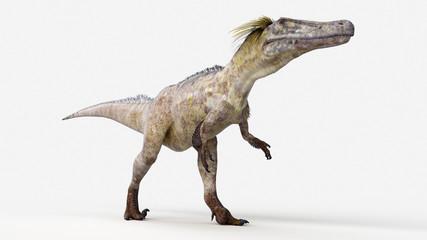 3d rendered illustration of a austoraptor