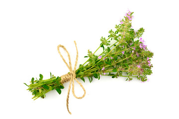 Isolated Thyme Bundle. Blooming Flower Tea Herb (Thymus).