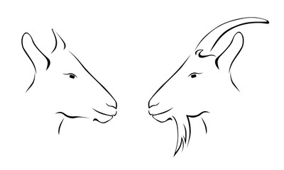 head of goat and ram outline icon vector illustration