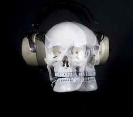 skull wearing headphones