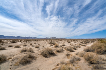 Mohave Desert landscape with blue cloudy skies