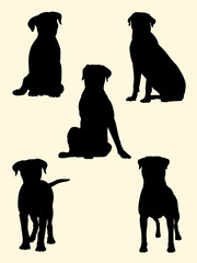 Rottweiler dog silhouette 02. Good use for symbol, logo, web icon, mascot, sign, or any design you want.