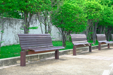 Wooden benches in public park.
