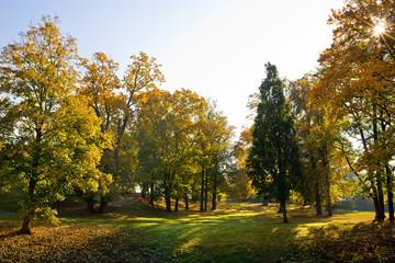 Autumn landscape. Park in Krasny Dvur. Czech Republic.
