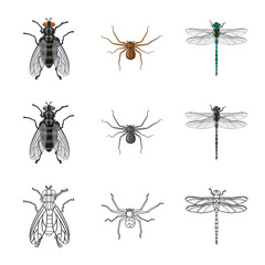 Isolated object of insect and fly logo. Set of insect and element stock symbol for web.