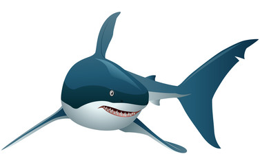 Cool cartoon shark. with simple gradients. All in a single layer. Vector illustration