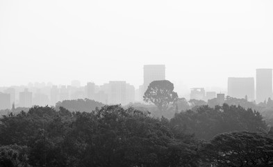 Cityscape of Sao Paulo on a foggy day.