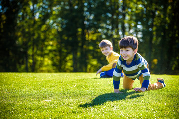 Two happy boys playing on fresh green grass meadow. Tumble and smiling together brothers kids are best friends