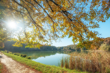 Autumn landscape with the sun rising over the pond