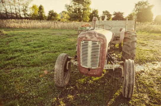 antique tractor in farmers field
