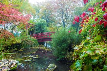 Japanese  garden . Autumn.
