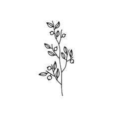 plant twig with berries icon. sketch isolated object