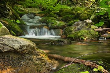 White Opava waterfall, Jeseniky mountains, Czech Republic