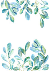 Frame of a eucalyptus branches.green floral border.postcard.watercolor hand drawn illustration.White background.