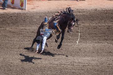 Bucking Bronco Throwing Rider