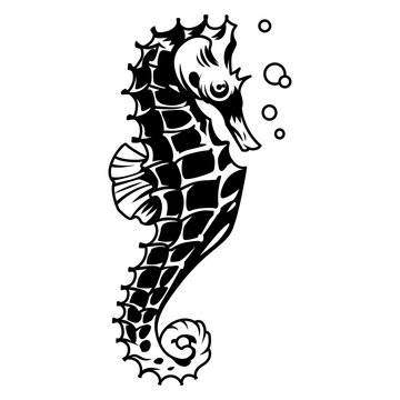 Vintage monochrome beautiful seahorse concept