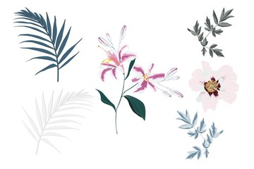 Botanical Elements: tropical pink lilies, peony flowers and palm leaves.