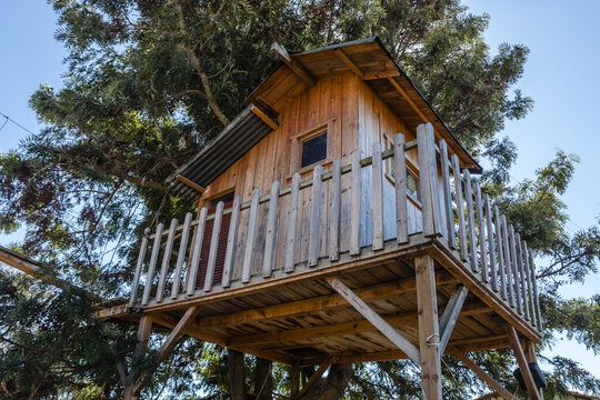 Treehouse for kids in the garden. Playhouse