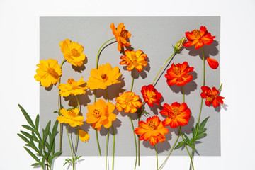 Orange and yellow flowers on grey sheet of paper