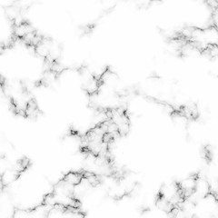 White marble background with natural stone texture.
