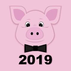 cute piggy paper pink symbol 2019