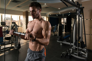 Man Exercising Biceps In The Gym