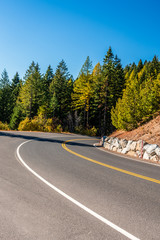 Mountain Road in Mount Spokane State Park, Spokane, Washington, USA