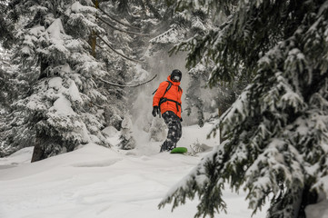 Man riding down the hill on the green snowboard between trees