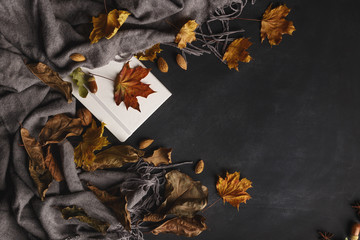 Autumn composition of dry leaves and fruits on a dark background. Top view. Copy space