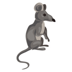 Grey mouse icon. Cartoon of grey mouse vector icon for web design isolated on white background