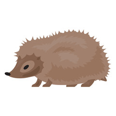 Hedgehog icon. Cartoon of hedgehog vector icon for web design isolated on white background