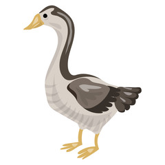 Goose icon. Cartoon of goose vector icon for web design isolated on white background