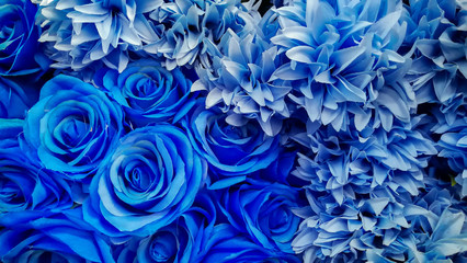 Rose - Flower, Drop, Plant, Blue, Flower Wall mural