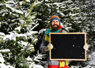 Guy with firtrees covered with snow on background, defocused.