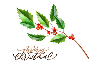 Vector realistic merry christmas holly leaves fir