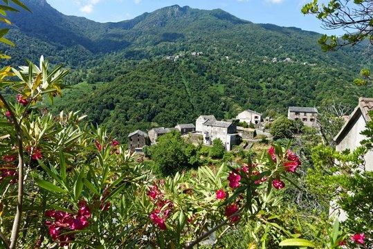 Frankreich - Korsika - Ortale